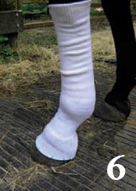 putting-socks-on-6